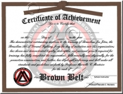 Brown Belt Promotion