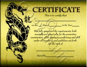 Green Dragon Certificate