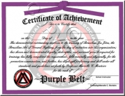 Purple Belt Promotion