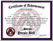 Purple Belt Stripes