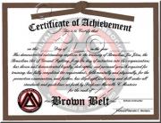 Brown Belt Promotion