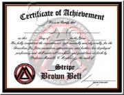 Brown Belt Stripes
