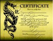 Green Dragon Certificate