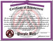 Purple Belt Promotion
