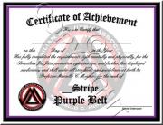 Purple Belt Stripes