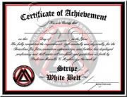 White Belt Stripes